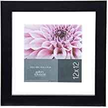 GALLERY SOLUTIONS 12x12 Black Float Frame For Floating Display of 10x10 Image #14FW1253