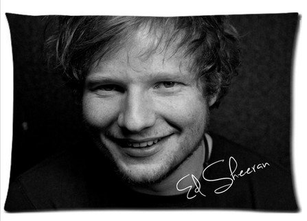 """Price comparison product image Accurate Store English singer-songwriter Ed Sheeran Pillow case Covers Standard Size 20""""x30"""""""
