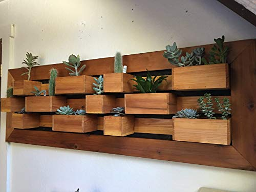 , In Stock, Modern Succulent Wall Planter, Living Wall Planter, Garden Wall Art, Succulent Garden, Wall Garden, Succulent Planter Box.