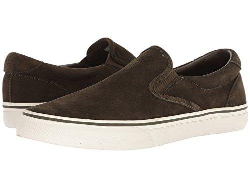 考え幸運排出[Polo Ralph Lauren(ポロラルフローレン)] メンズカジュアルシューズ?スニーカー?靴 Thompson