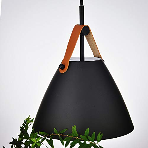 Brown Pendant Light Shades in US - 6