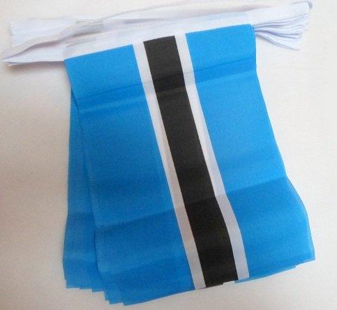 - AZ FLAG Botswana 6 Meters Bunting Flag 20 Flags 9'' x 6'' - Botswanan String Flags 15 x 21 cm