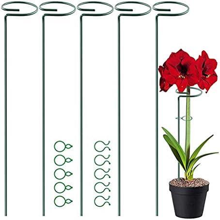 Maufy Pflanzenstützstab für den Garten, halbrund, Grün, 5 Stück