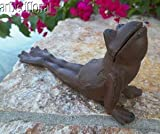 Brown Cast Iron Frog Door Wedge