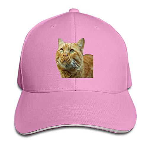 Ginger Cat Men's Structured Twill Cap Adjustable Peaked