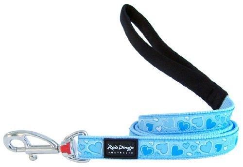 Red Dingo Breezy Love Light Blue Dog Lead 1.2 M Small