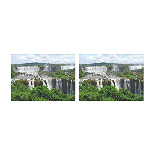 (THKDSC Placemats Tributaries of The Amazon River Table Mats Set of 2 Non-Slip Washable Coffee Mats Heat Resistant Kitchen Tablemats for Dining Table Indoor Outdoor14'' X 19''(35x48cm))