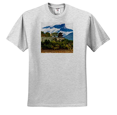 3dRose Danita Delimont - China - Baidicheng, White Emperor City, Yangtze River, China - Toddler Birch-Gray-T-Shirt (2T) (ts_312602_31)