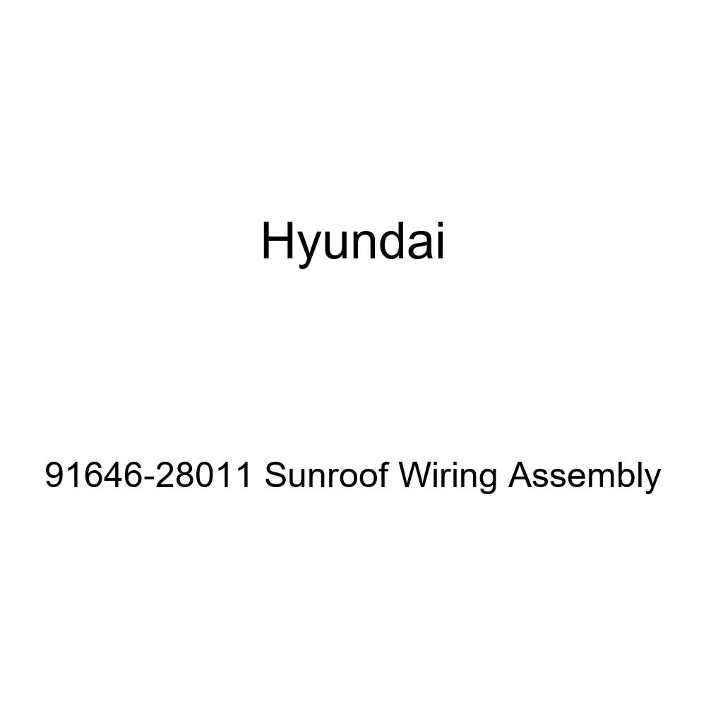 Genuine Hyundai 91646-28011 Sunroof Wiring Assembly
