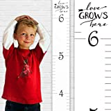 "Growth Chart Art | Wooden Growth Chart Ruler for Boys + Girls | Kids Growth Chart Wood | Measuring Kids Height Wall Décor | White with Black Numerals - ""Love Grows Here"""