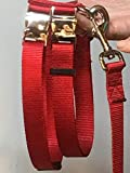 PIG HOG Harness with Matching Leash 2 Buckles