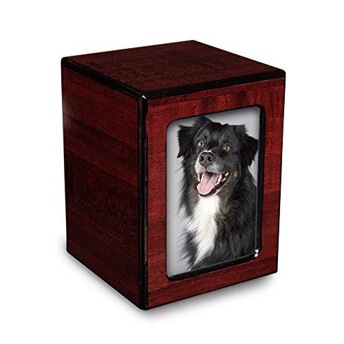 wooden dog urns - 7