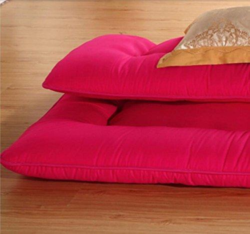 DHWJ Thickened,Tatami,Mattress Single,Double,Student dormitory,10cm bed cushion-B 120x200cm(47x79inch) by DHWJ (Image #4)