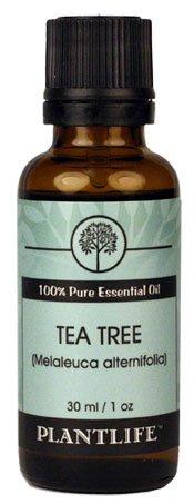 Tea Tree 100% Pure Therapeutic Grade Essential Oil - 30 ml