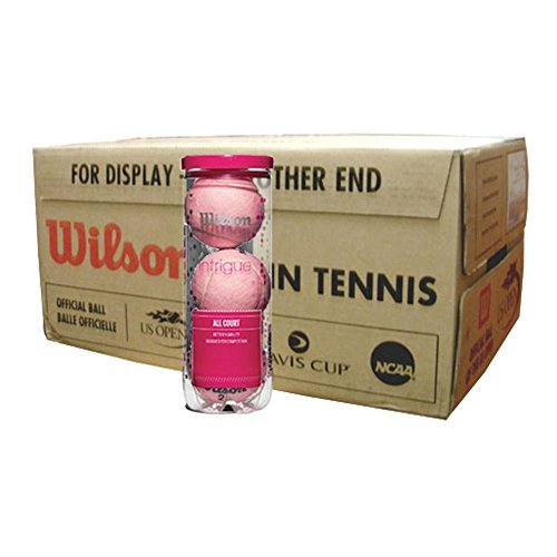 Wilson Intrigue All Court Pink Tennis Balls (1/2 Case)