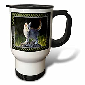 Susan Brown Designs Animal Themes - Explorer Kitty - 14oz Stainless Steel Travel Mug/Tazas de desayuno (tm_48054_1)