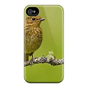 Cute High Quality Iphone 6 Bird On A Twig Cases
