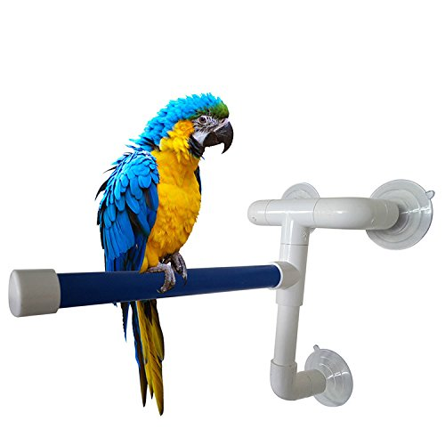 Fold Away Parrots Shower Perch Bath Stands Birds Toy Holder Rack Platform Suction up Hanging for Medium to Large Birds (L: 30x24x17cm) by Evursua