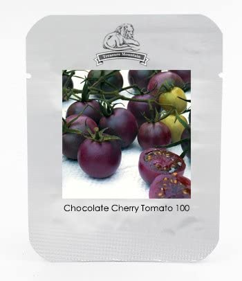 100 Seeds // Pack Professional Pack Chocolate Cherry Tomato Plant Seeds Clusters of Tomatoes #NF830