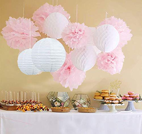 - Qian's Party 12pcs White Pink Pom Pom Flower Tissue Paper Pom Pom Honeycomb Ball Paper Lantern Paper Flower Hanging Pom Wedding Pink Party Decorations Bridal Shower Decoration