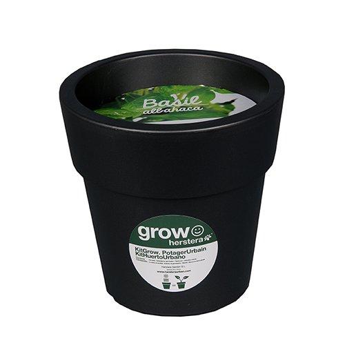 Herstera Garden 12211225 Kit grow albahaca Antracita 25x24x25 cm ...