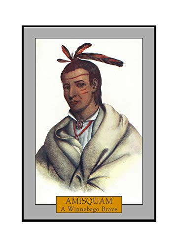 Amisquam - Portrait of a Winnebago Brave (24x36 Fr