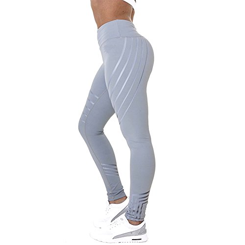 Fittoo Hot Sale Yoga Pants Sport Pants Workout Leggings Sexy High Waist Trousers - Grey Line (S)