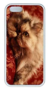 iPhone 5S Customized Unique Landscape Flowers Persian Cat 2 New Fashion TPU White iPhone 5/5S Cases