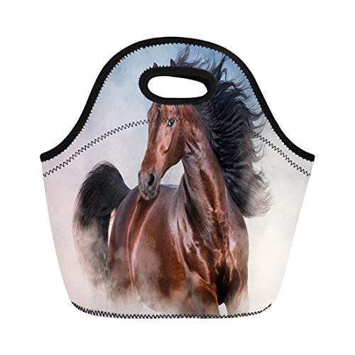 Semtomn Lunch Bags Black Andalusian Bay Stallion Long Mane Run Fast Neoprene Lunch Bag Lunchbox Tote Bag Portable Picnic Bag Cooler Bag