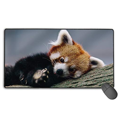 Smooth Gaming Mouse Pad Mouse Pad 4075 Mobile Cute Red Panda Computer Keyboard Mousepad Mouse -