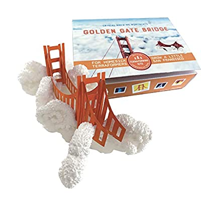 Copernicus Toys Crystal Growing Golden Gate Bridge Official Terraformer kit | Grows in Hours | Facts and Instructions Included: Toys & Games