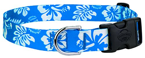 Country Brook Petz Blue Hawaiian Feather Weight Deluxe Dog Collar- Extra (Extra Small Dog Apparel)