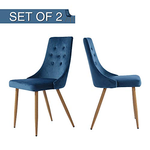 - GreenForest Velvet Dining Chairs Set of 2, Upholstered Accent Chairs Midcentury Modern for Living Room Kitchen High Back, Navy Blue