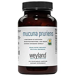 Gut Health Shop 41dKh0h9ChL._SS300_ Weyland: Made with Organic Mucuna Pruriens 1000mg (1 Bottle)