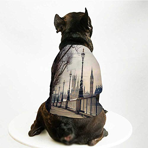 YOLIYANA London Printing Pet Suit,Big Ben and Houses of Parliament The Riverside with Retro Lanterns Picture for Small Dog Teddy Chihuahua Bichon,L