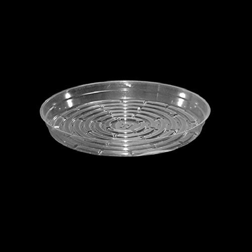 Clear Plastic Plant Saucers - 12 Inch, 25 Pack