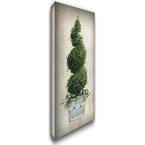 Spiral Topiary 18x40 Gallery Wrapped Stretched Canvas Art by Swatland, ()