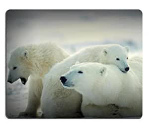 Animals Cubs Polar Bears Baby Mouse Pads Customized Made to Order Support Ready 9 7/8 Inch (250mm) X 7 7/8 Inch (200mm) X 1/16 Inch (2mm) High Quality Eco Friendly Cloth with Neoprene Rubber MSD Mouse Pad Desktop Mousepad Laptop Mousepads Comfortable Computer Mouse Mat Cute Gaming Mouse pad