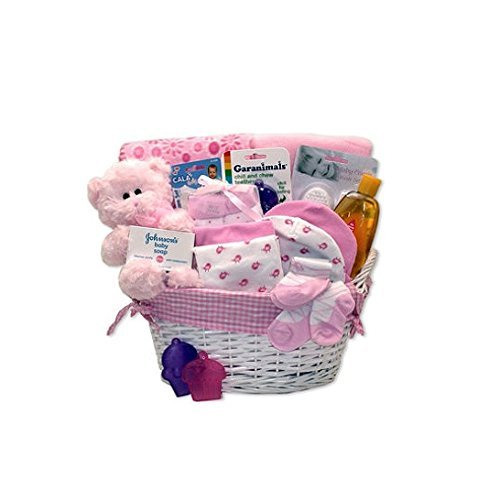 Simply Baby Girl Necessities Basket - Pink by The Gift Basket Gallery (Image #1)