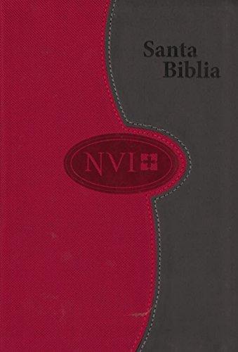Biblia NVI de letra grande – A dos tonos: Gris/Color ladrillo (Spanish Edition)