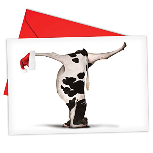 12 'Bovine Nirvana Headstand' Hilarious Christmas Greeting Cards 4.63 x 6.75 inch, Merry Xmas Note Cards for Holidays, Gifts, Funny Christmas Humor, Notecard Stationery w/ Envelopes ()