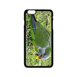 Parrot Hight Quality Plastic Case for Iphone 6