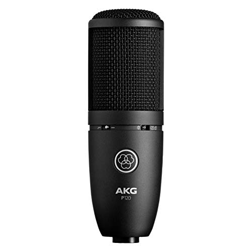 (AKG P120 High-Performance General Purpose Recording Microphone)