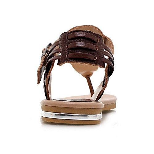 AalarDom Mujer Hebilla Puntera Dividida Mini Tacón Pu Sólido Sandalias de vestir Marrón