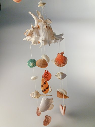 WIND CHIMES MIX SEA SHELL HANGING CHANDELIER DECOR BEACH 18 INCH 1 PC