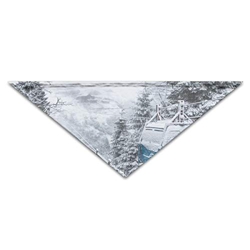 Xsdave Blue and White House Near Body of Water Painting 1 Soft Pet Washable Triangle Scarf for Small and Medium Sized Dogs, Puppies, Kittens, Rabbits