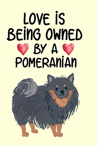 Love Is Being Owned By A Pomeranian: Pomeranian lovers know this to be true and anybody who owns one would love to have this super notebook (White Teddy Bear Pomeranian Puppies For Sale)