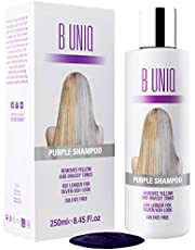 Shampoing Argent à Pigments Violets - Élimine les Reflets Jaunes - Renforce les Cheveux Blonds/Décolorés/Méchés/Gris - Sans Sulfate - 250ml