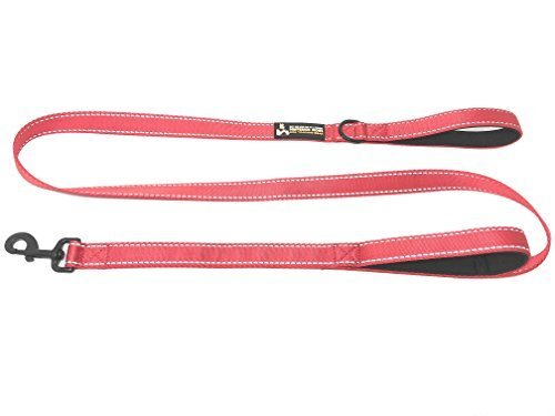 Buy One Give One To A Rescue Pawfessor Dions Dog Training Gear Pawfessor Dions 6Ft Reflective Double Handle Traffic Dog Leash   Buy One And We Donate One To A Dog Rescue