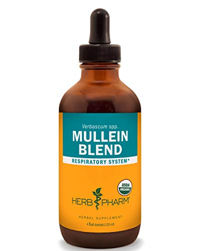 Herb Pharm Certified Organic Mullein Blend Liquid Extract for Respiratory System Support – 4 Ounce
